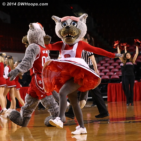 NC State's pregame intros are traditional, well choreographed, and entertaining  - NCSU Players: Mascot Ms. Wuf