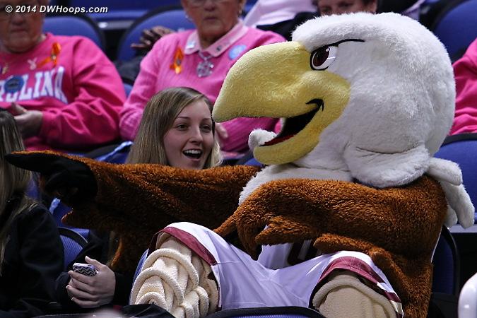 ACCWBBDigest Photo  - BC Players: Mascot Baldwin the Eagle,  Boston College Fans