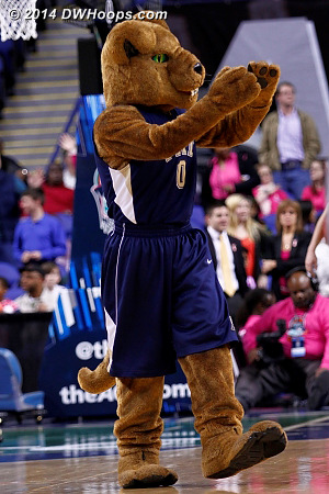 ACCWBBDigest Photo  - PITT Players: Mascot Roc the Panther