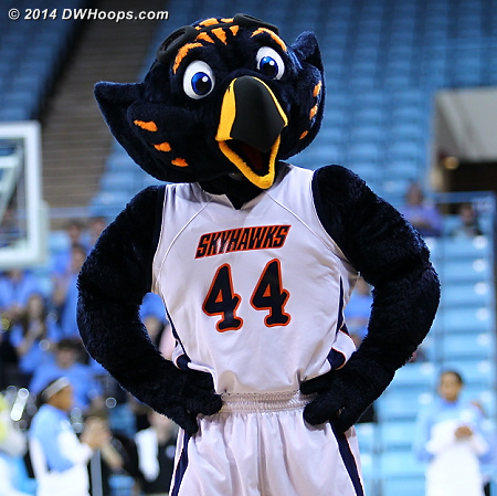 Just what is a Tennessee-Martin Skyhawk?  This.  - UT-M Players: Mascot Skyhawk